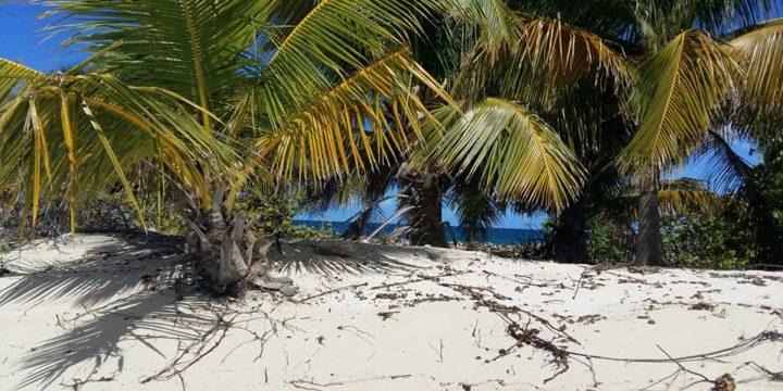 Il nostro viaggio verso i Caraibi