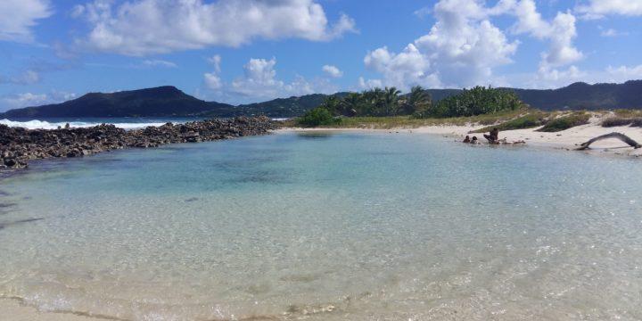Tyrrel Bay – Sandy Island – Clifton